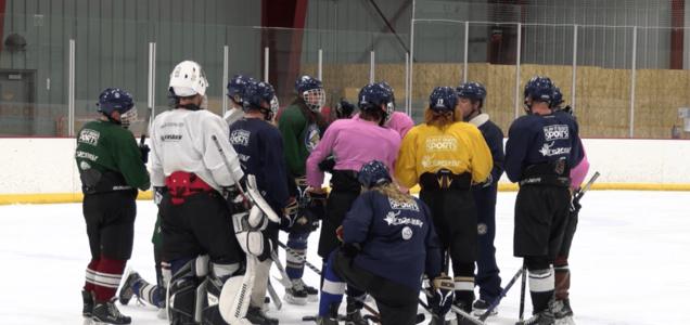 Montana State Bobcats' historic hockey run ends at nationals